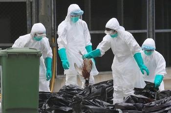 Врачи не знают, что делать с новым коронавирусом. Как он распространяется?