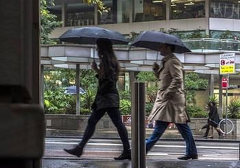 Прогноз погоды: дожди до конца недели