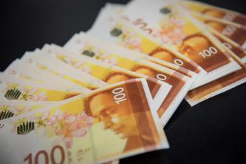 НДС в Израиле: сколько денег приносит Минфину пассивной налог на покупки