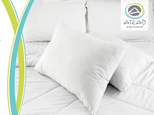 Arad textile: 2 подушки – за 50 шек.
